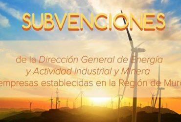 subvenciones de la Dirección General de Energía y Actividad Industrial y Minera